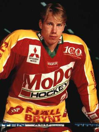 Hockey Allsvenskan Jamesedyrn S Weblog